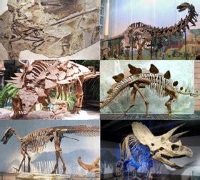 Dinosauria   Wikipedia, la enciclopedia libre