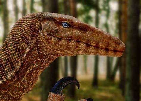Dinosaurio carnívoro. | Dinosaur fossils, Dinosaur, Animals