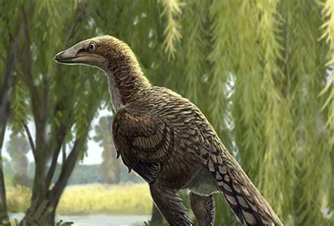 Dinosaurio carnívoro que vivió en Pirineos | La FM