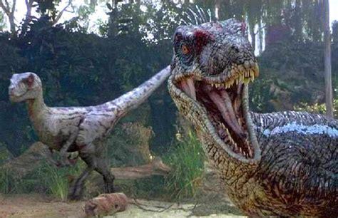 Dinosaurio Velociraptor  Ladrón veloz    Dinoenix