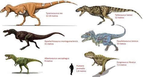 Dinosaurios carnívoros   nombres y características