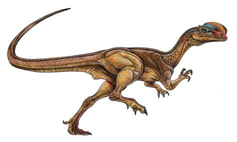 Dinosaurios Carnivoros | Trabajo Segundo Parcial 715777