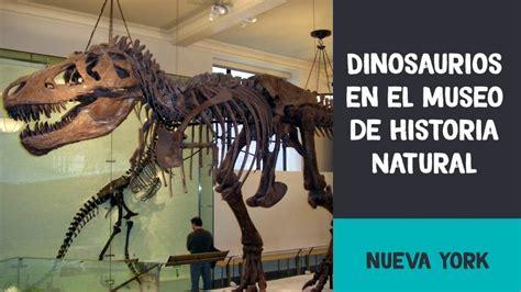 Dinosaurios en el Museo de Historia Natural | Nueva York ...
