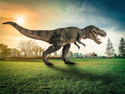 Dinosaurios   Nombres, historia e información ...