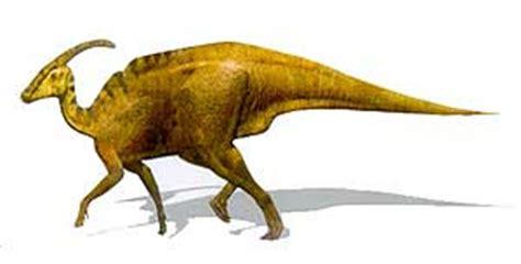 dinosaurios: PARASAUROLOFUS