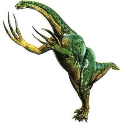 Dinosaurios rarosDinosaurios