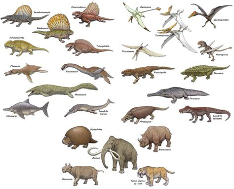 Dinosaurios y animales prehistóricos | El Universo de Laro ...
