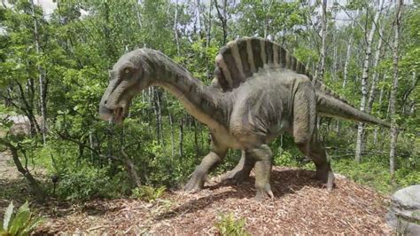 Dinosaurs Alive   YouTube