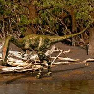 Dinosaurs And More: Coelophysis and Postosuchus