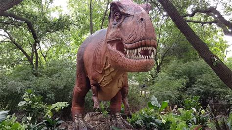 Dinosaurs at the Houston Zoo 2016   YouTube