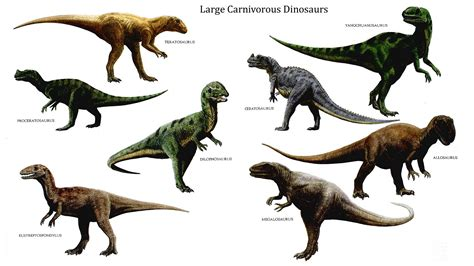 Dinosaurs for KS1 and KS2 children | Dinosaurs homework ...