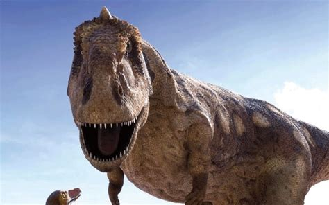 Dinosaurs must have lived in water, scientist claims ...