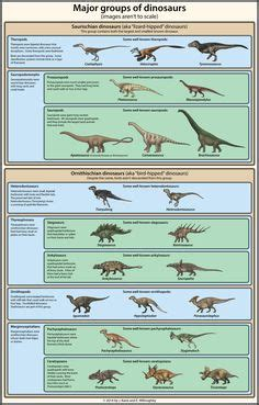 DINOSAURS names with pictures | dinosaur | Pinterest ...