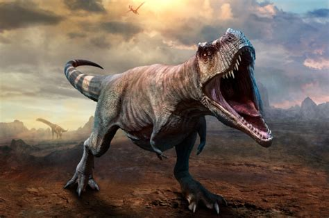 Dinosaurs 'were thriving' before asteroid hit, says study