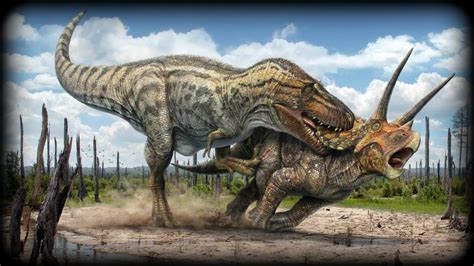 Dinosaurs Unearthed   Triceratops   YouTube