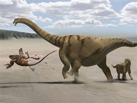 Dinosaurs were born to be big   CBS News