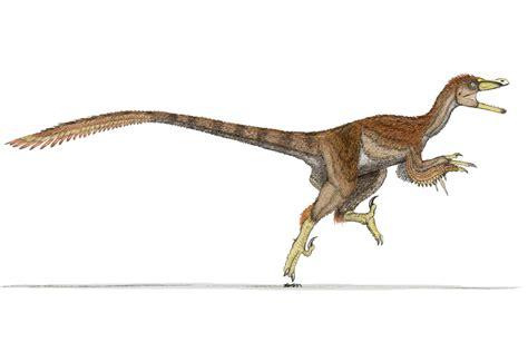 Dinossauros: Velociraptor