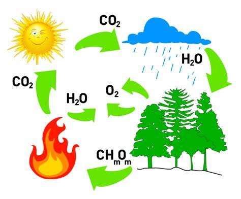 Dióxido de Carbono, Características: | BOMBEROS SAN RAFAEL