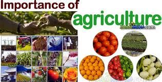 Discuss on Importance of Agriculture   Assignment Point