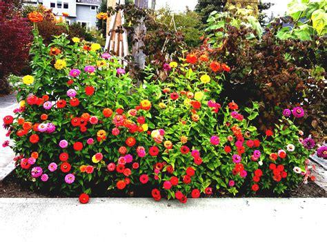 Diseño de jardines pequeños y modernos