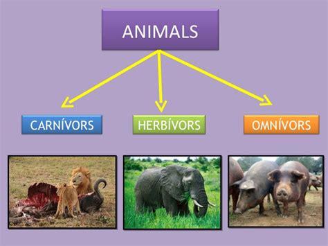 Disfrutem amb els animals: Carnívors, herbívors i omnívors