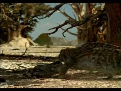 documental vida antes de los dinosaurios part 6   YouTube