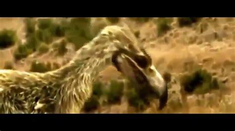DOCUMENTALES DE ANIMALES. SUPER DEPREDADORES. DINOSAURIOS ...