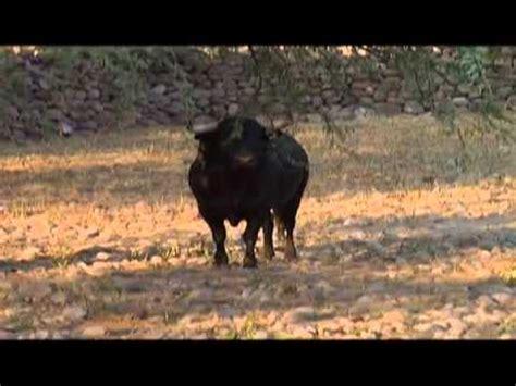 Documentales de las ganaderías de Lidia en México   YouTube