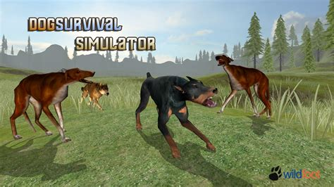 Dog Survival Simulator   Android Gameplay   YouTube