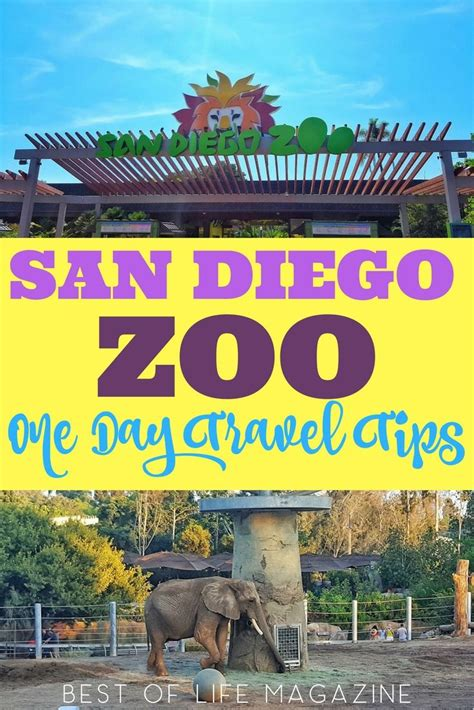 Don t let your first trip to the San Diego Zoo pass you by ...