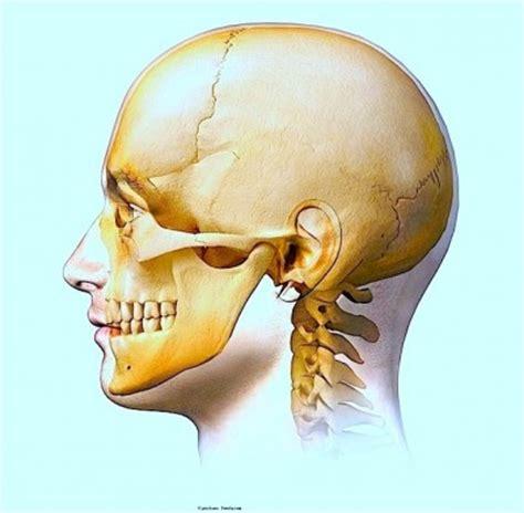 Dor na mandíbula, direita ou esquerda | Fisioterapia para ...