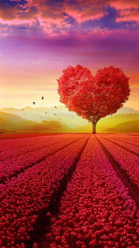 Download Download Wallpaper   Love Nature Wallpaper Hd For ...