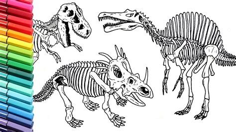 Drawing and Coloring Dinosaurs Skeleton   How to Draw and ...