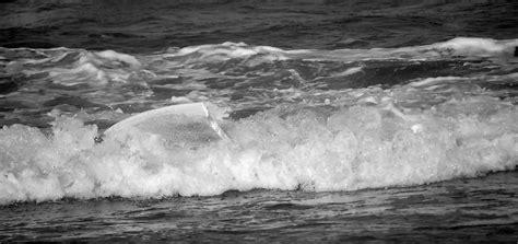 DSC_0205   Emilio rotgla chilet   Flickr