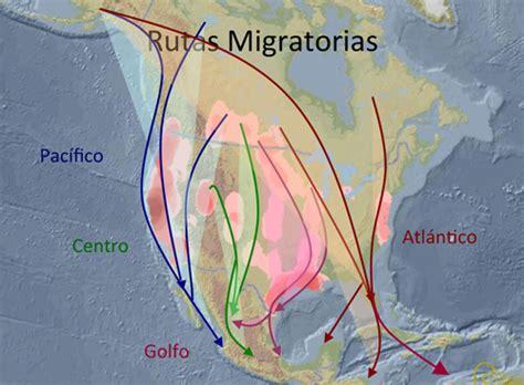 Ducks Unlimited de México, A.C.