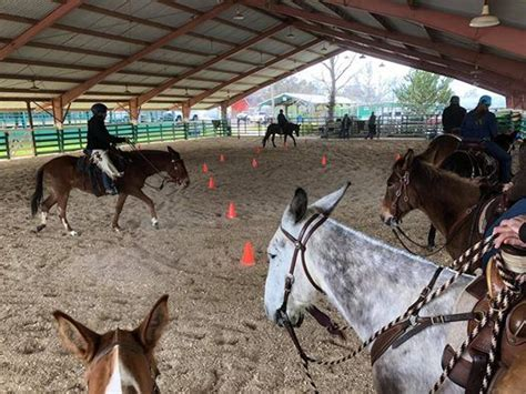 Dunnigan, CA Ty Evans Clinic at Running I Ranch, California