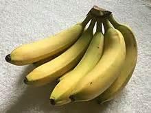 Dwarf Cavendish banana   Wikipedia