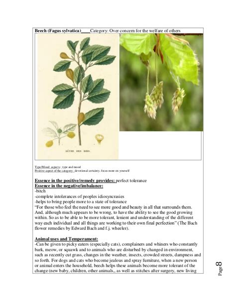 E book 38 bach flower essences   a beginners guide to ...