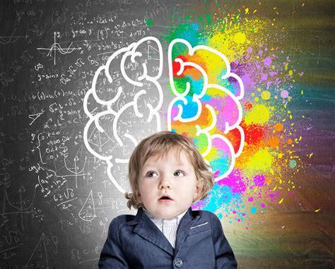 Early Childhood Brain Development   Kid s Corner Preschool ...