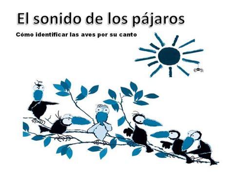 ECOAULA: El sonido de los pájaros