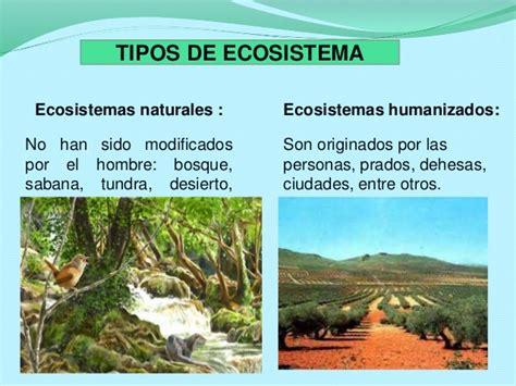 Ecosistema humanizado UPEL