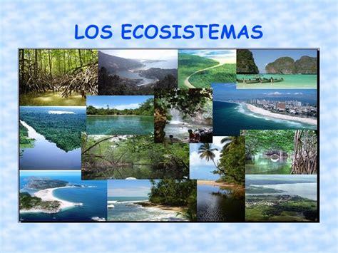 Ecosistemas 10