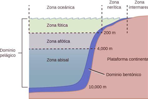 Ecosistemas de Agua Salada