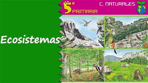 Ecosistemas. Naturales, 5º Primaria. Tema 6   YouTube