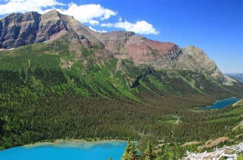 Ecosistemas naturales; qué son, tipos y ejemplos | OVACEN