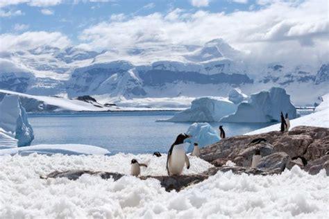 Ecosistemas terrestres: características y tipos ...