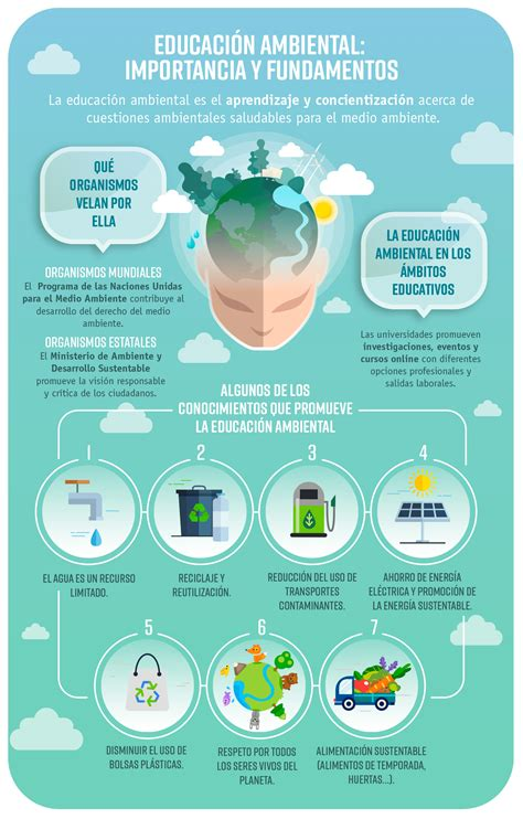 Educación ambiental: importancia y fundamentos