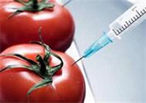 Ejemplos de biotecnología   Modelos, muestras y ...