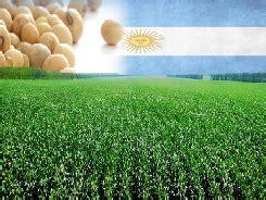 El 2015, otro año de sojización en Argentina   Por Matilde ...