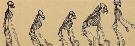 El ADN nos revela la historia de la especie humana | OpenMind
